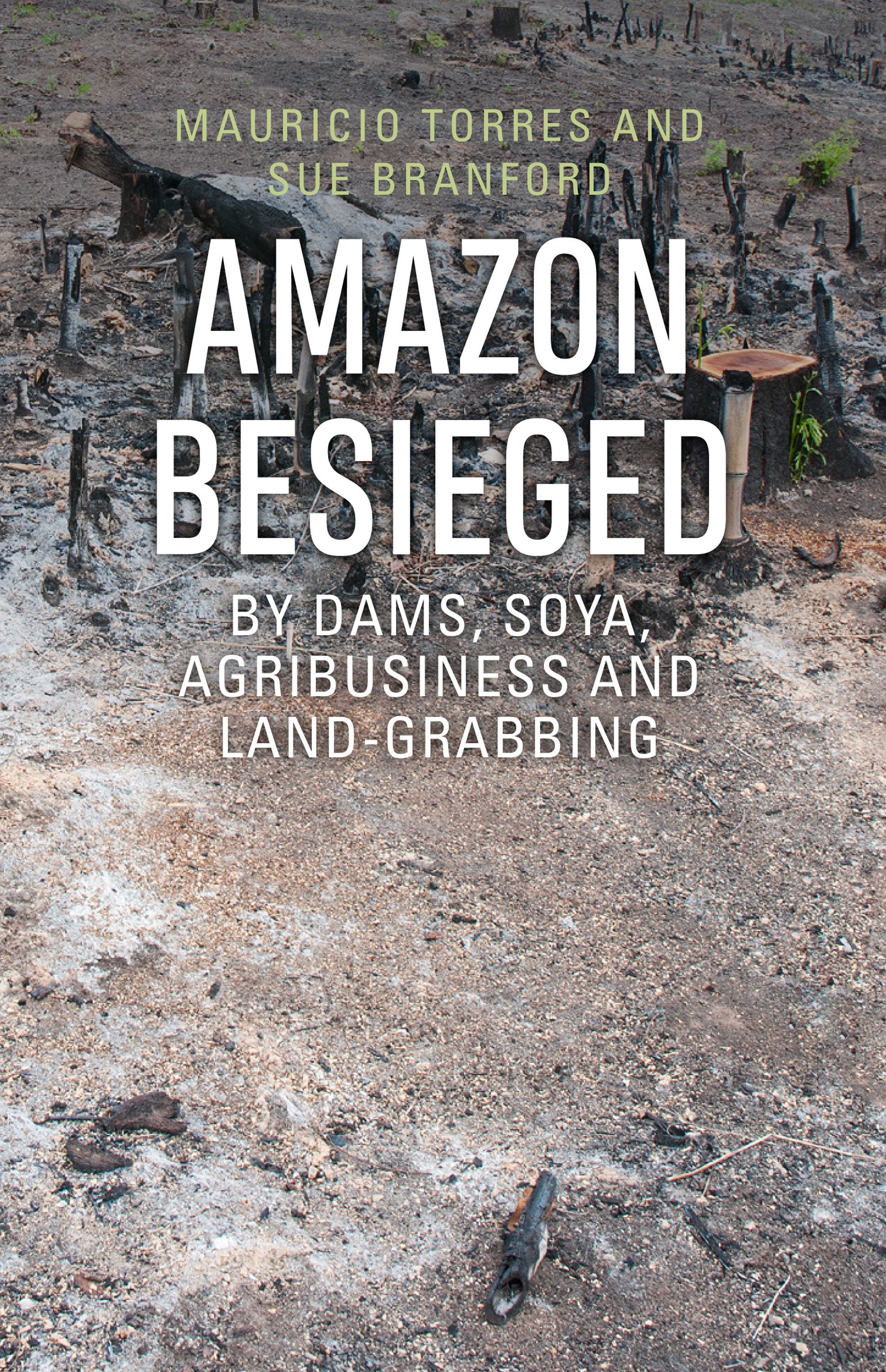 Amazon Besieged