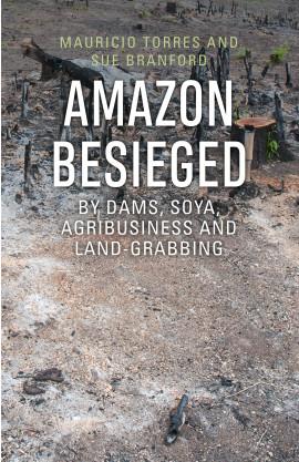 Amazon Besieged